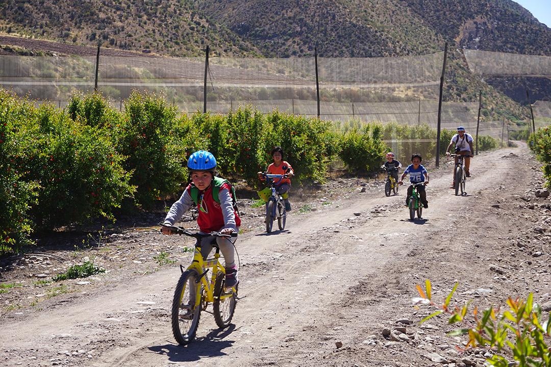 Photo of Corporación Pedaleable y Escuela Dagoberto Campos Núñez recorren la ruta Elqui Pedaleable