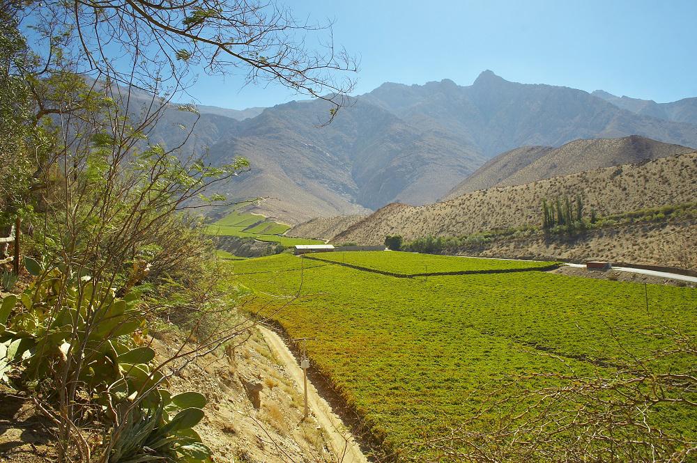 Photo of Comités de Ministros de Turismo declaran al Valle de Elqui como Zona de Interés Turístico