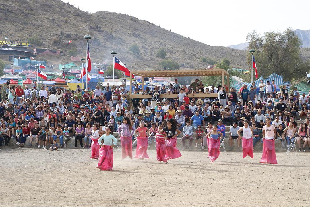 Photo of Descartan realizar pampillas en la región por segundo año consecutivo