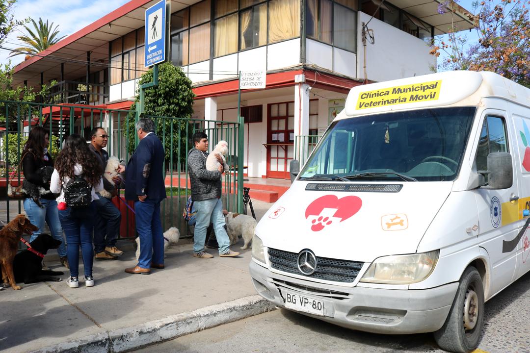 Photo of Un total de 97 mascotas pudieron ser vacunadas gratuitamente contra la rabia en Vicuña