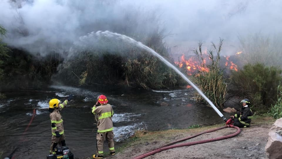 Photo of Autoridades interponen denuncia en contra de quienes resulten responsables de incendio forestal en Paihuano