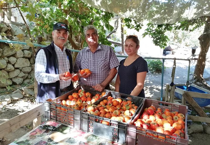 Photo of Guillermo Arias: disfrutando los frutos de una vida de trabajo en Tres Cruces