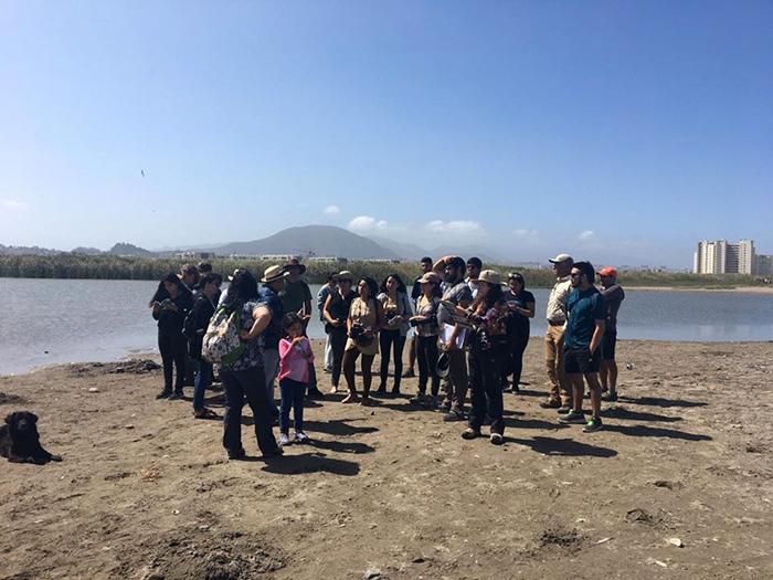 Photo of Humedal de la Desembocadura del Río Elqui: Un pulmón natural en camino a su preservación