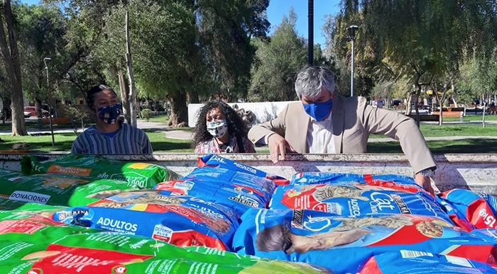 Photo of Donan alimento para perros y gatos a organización animalista de Vicuña