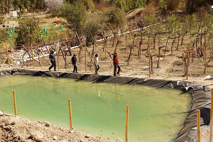 Photo of Chapilcana disfruta proyecto de riego tecnificado que optimiza el recurso hídrico y sus tiempos