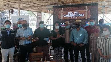 Photo of Día del Campesino en Paihuano realza trabajo de la Agricultura Familiar Campesina