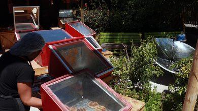 Photo of Continúa la apertura de restaurantes en la comuna de Vicuña