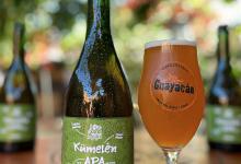Photo of Kumelen: Guayacán abre venta de Cerveza del Bicentenario de Vicuña