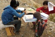 Photo of Dos hermanos del sector Las Minillas en la comuna de Vicuña se conectan a sus clases desde un cerro