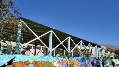 Photo of Artistas locales interpretan obras y pensamientos de Gabriela Mistral en muros de Vicuña