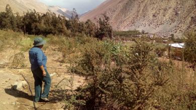 Photo of CEAZA contribuye a la toma de decisión hídrica de la comuna de Paihuano