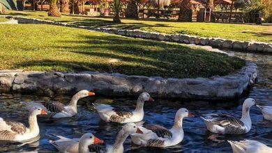 Photo of Las Vertientes de El Molle: Un parque natural de manantiales que envuelve y sorprende