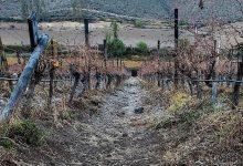 Photo of Pronostican heladas locales para los valles y precordillera de la zona