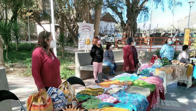 Photo of El Tambo: Continúa programa pionero de turismo rural en la comuna de Vicuña