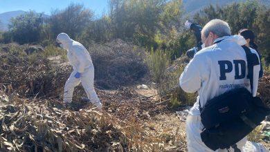 Photo of PDI encuentra nuevas evidencias por crimen de mujer que fue encontrada en Las Rojas