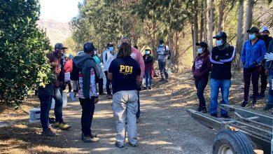 Photo of PDI fiscaliza a trabajadores migrantes en fundo agrícola de Gualliguaica