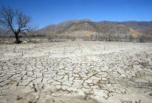 Photo of Gremio agrícola pide urgencia para construcción de plantas desaladoras
