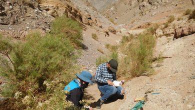 Photo of Buscan comprender aluviones en base a información del pasado de los valles de Elqui y Aconcagua